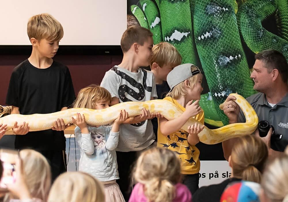 Slangetæmmer